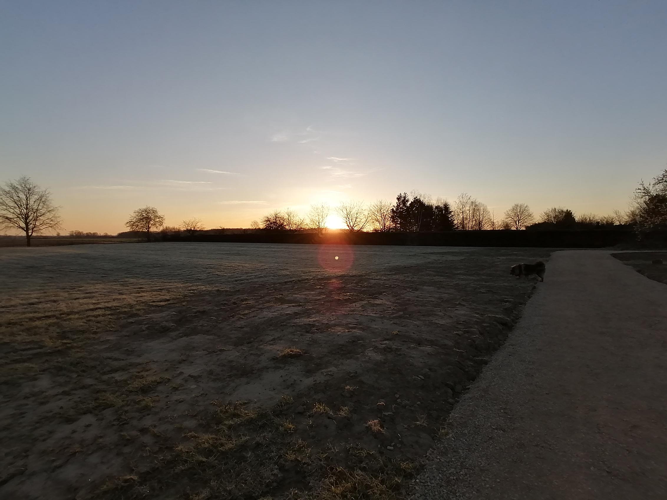 Le pré de l'Aristophane un matin d'hiver